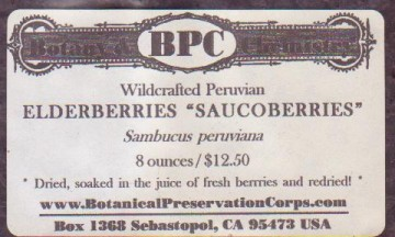 medium_saucoberries.2.jpg