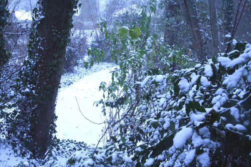neige devant 17 dec 001.jpg