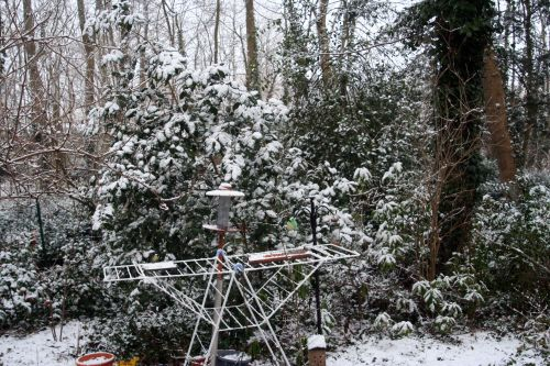 neige adolphe 20 février 001.jpg