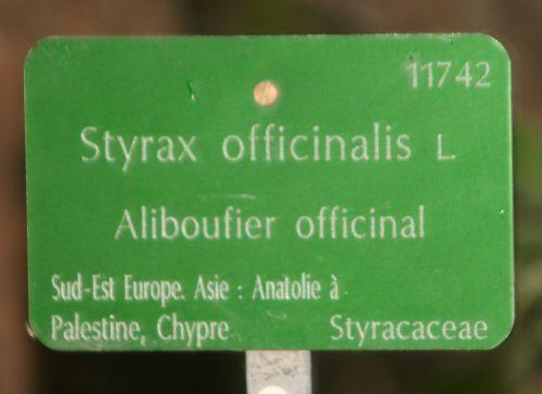 styrax étiq paris 26 sept 2010 107.jpg