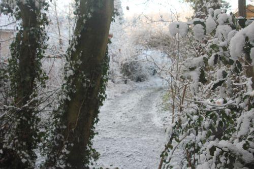 neige veneux 16 janv 2013 002.jpg