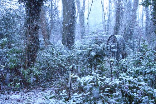 veneux nord 10 février 001.jpg