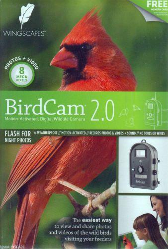 bird cam 01.jpg