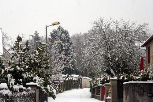 neige 20 déc 2010 067.jpg