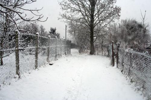 neige 20 déc 2010 003.jpg