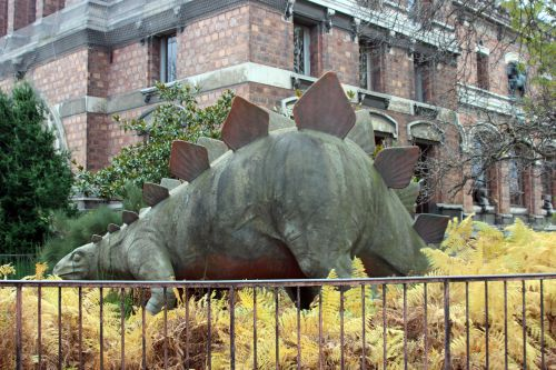 stegosaurus paris 1 dec 2013 014.jpg