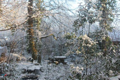 neige veneux 16 janv 2013 001.jpg