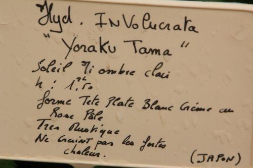 1 yoraku tama barres 13 oct 2012 022.jpg