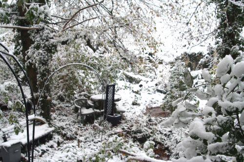 neige 29 nov 2010 011.jpg