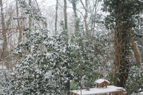 5 adolphe neige 19 janvier 2013 004.jpg