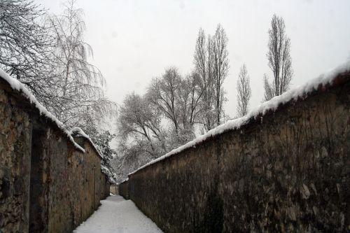 neige 20 déc 2010 012.jpg