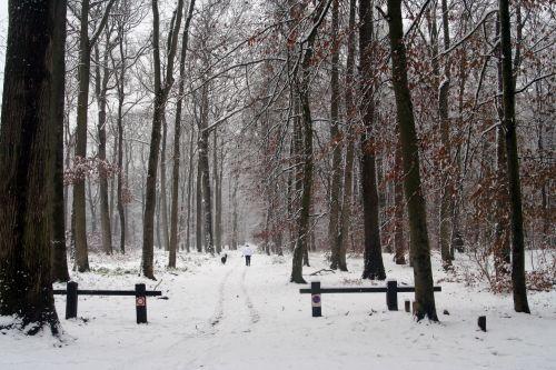 neige 20 déc 2010 091.jpg