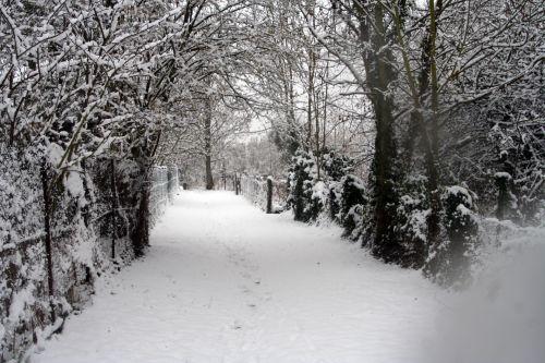 neige 20 déc 2010 002.jpg