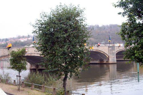 yonne pont amont montereau 26 nov 012.jpg