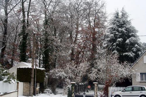 neige entrée 1 20 déc 2010 096.jpg