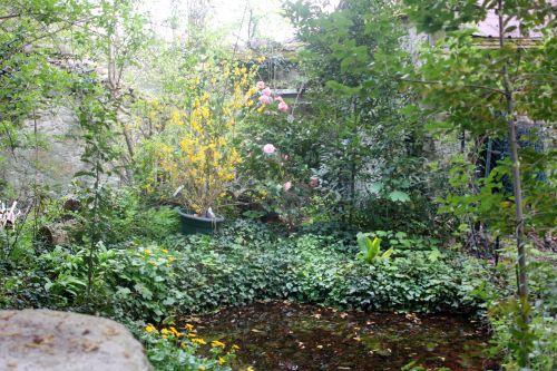 1 mare veneux 13 avril 2012 001.jpg