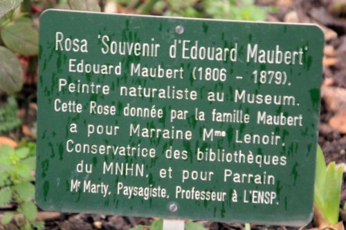 5 souvenir d'edouard maubert paris 12 janv 2013 145.jpg