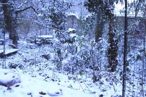 neige fond 17 dec 003.jpg