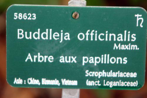 paris étiq 31 déc 2011 085.jpg