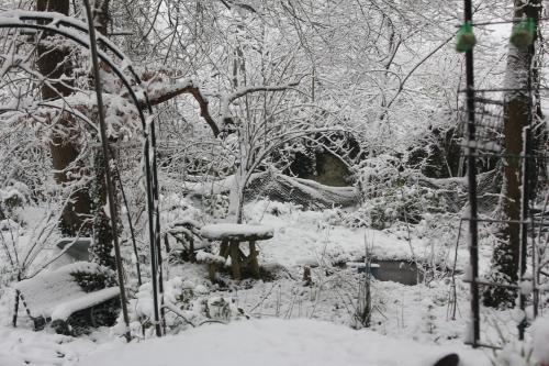 4 neige veneux 7 fev 2018 004.jpg