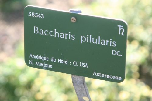 bac étiq paris 10 oct 2010 122.jpg