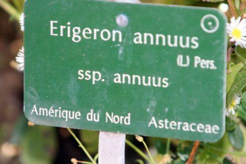 erig étiq paris 10 oct 2010 126.jpg
