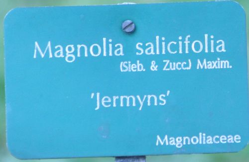 magnolia sal paris 23 mars 035.jpg