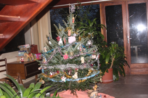 arbre de noel veneux 17 déc 2014 006.jpg