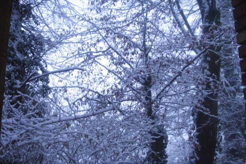 neige 1 devant 18 dec 003.jpg