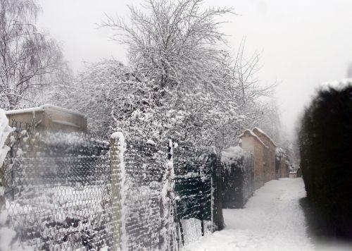 neige 20 déc 2010 006.jpg