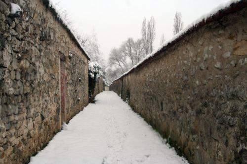 neige 20 déc 2010 011.jpg
